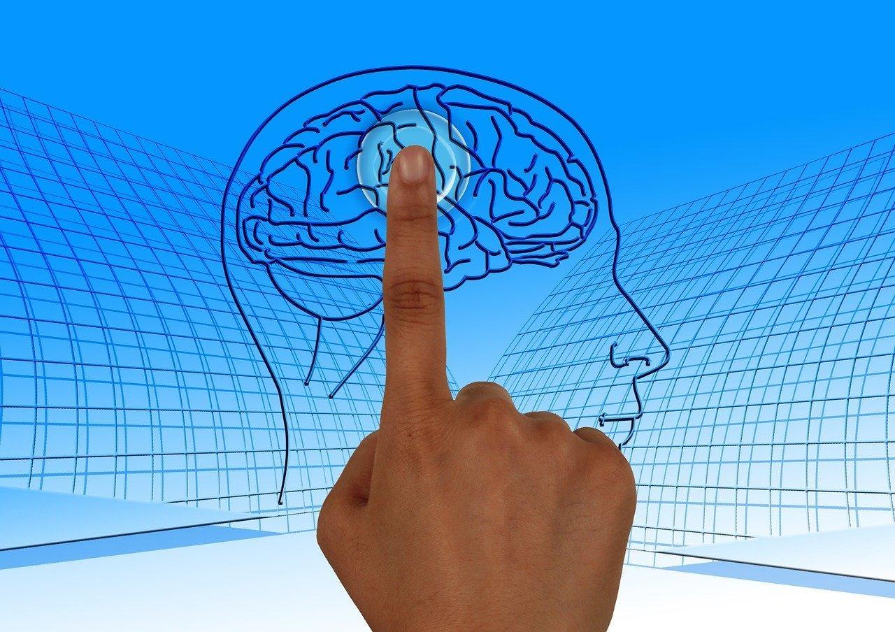 Mapas mentais: otimize seus estudos