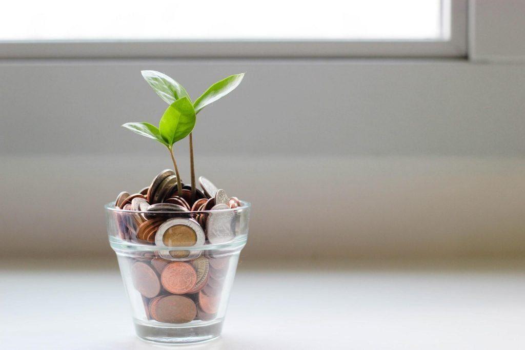 como fazer minha organização financeira